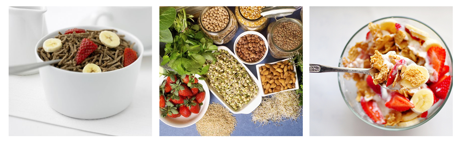 Beneficios múltiples de la fibra para la salud digestiva