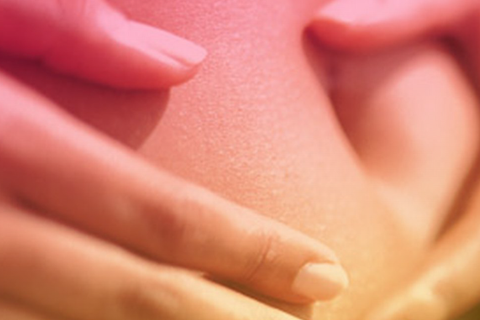 La grasa abdominal como factor de riesgo cardiovascular