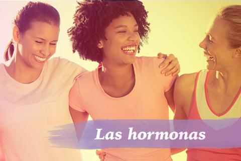 las-hormonas