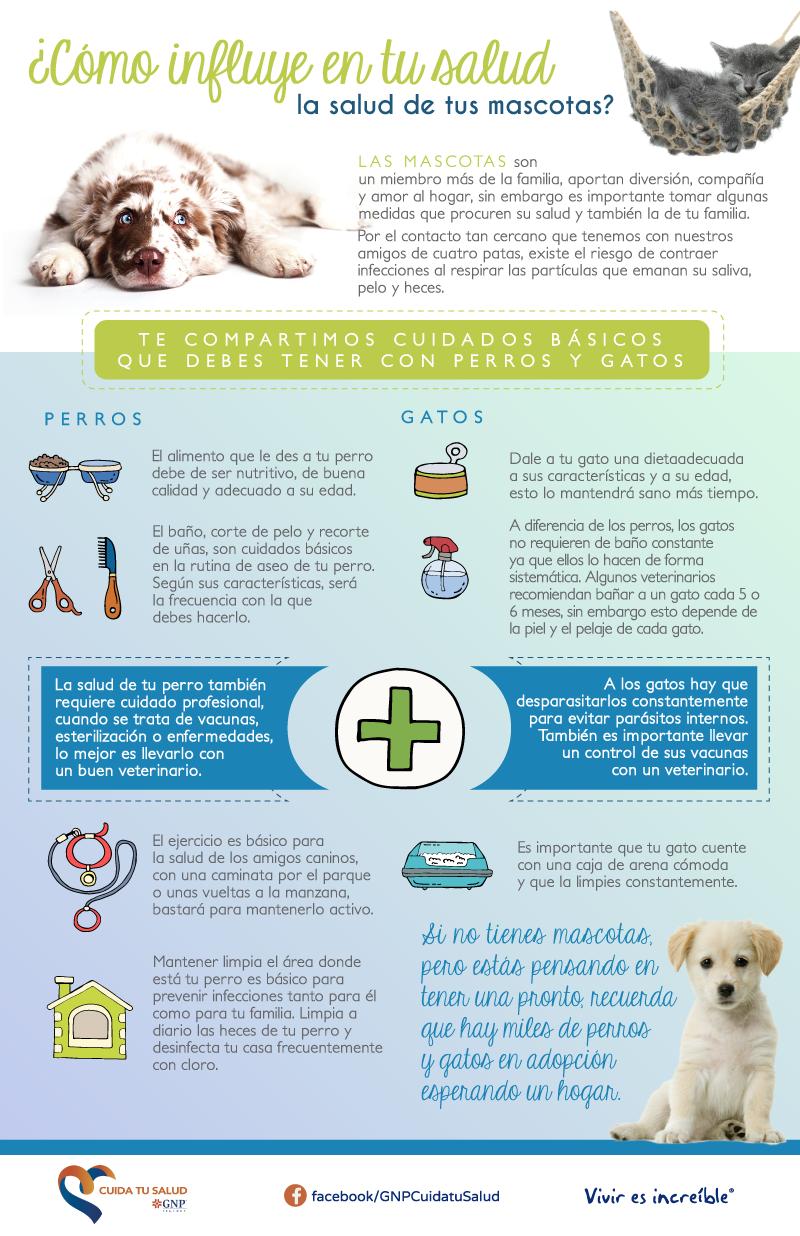 ¿Cómo influye en tu salud la salud de tus mascotas?