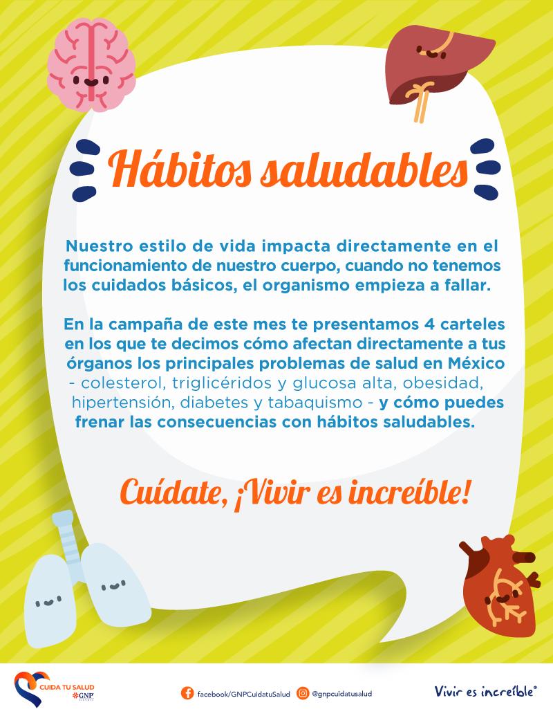 Los hábitos saludables y los órganos vitales
