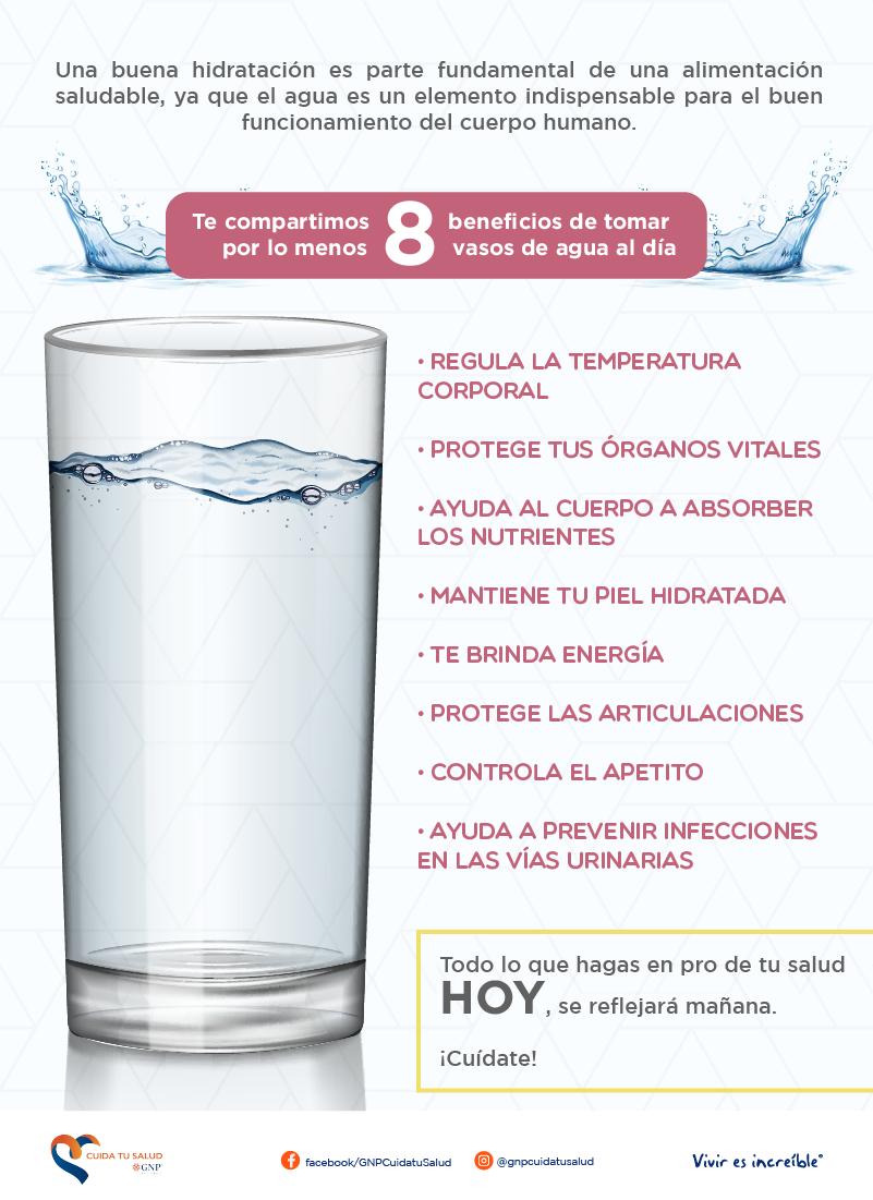 Beneficios de tomar por lo menos 8 vasos de agua al día